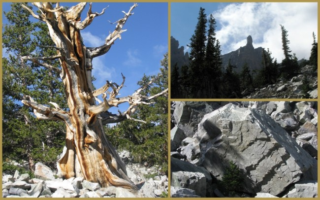Great Basin National Park 4