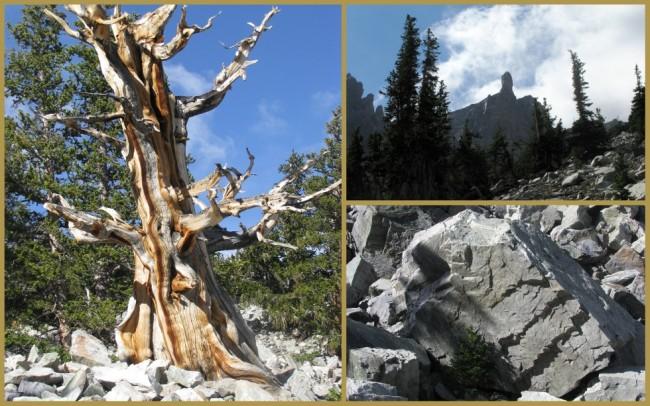 Great Basin National Park 4