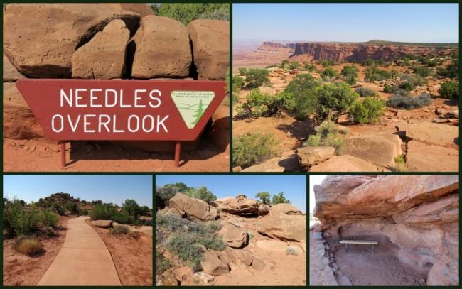 Mesa Verde #9