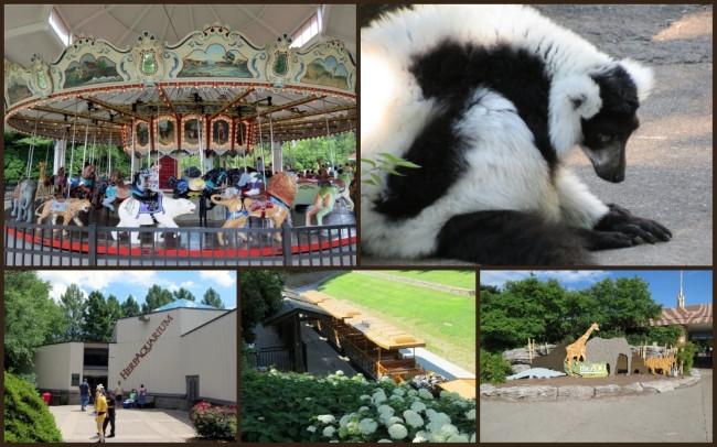 Louisville Zoo #10