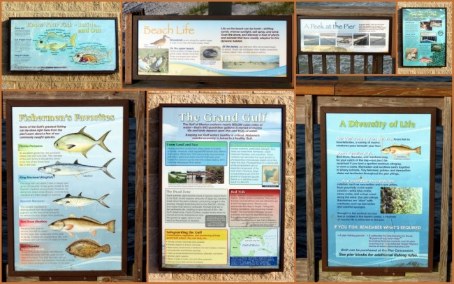 Gulf Shores #10
