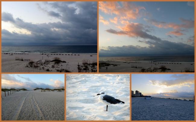 Gulf Shores #4