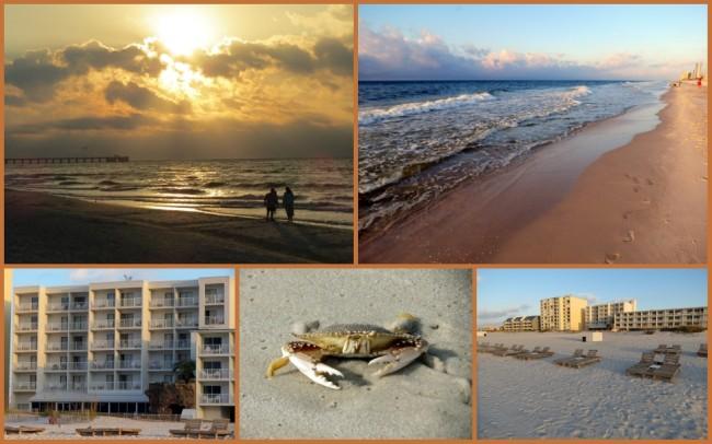 Gulf Shores #5