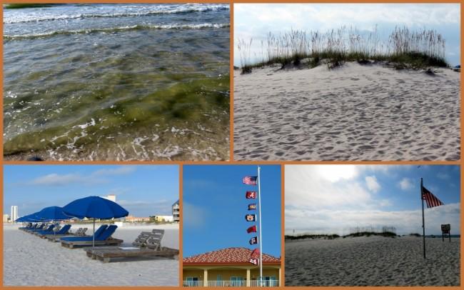 Gulf Shores #6