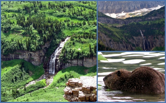 Glacier National Park #9