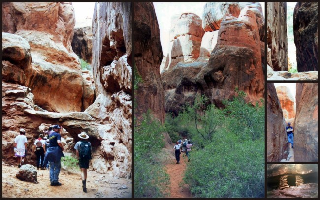 Canyonlands #7