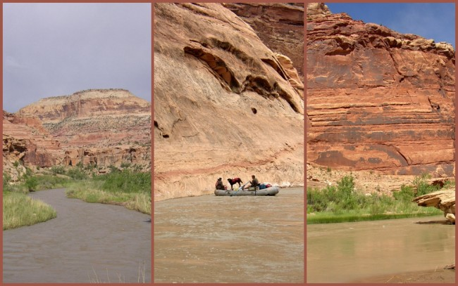 San Rafael River #5