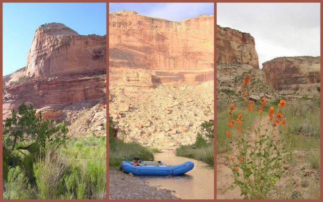 San Rafael River #7