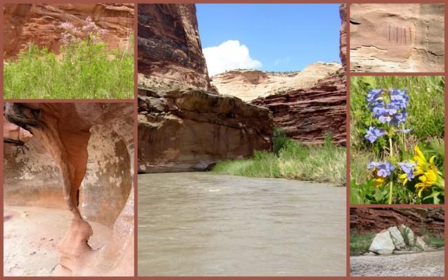 San Rafael River #9