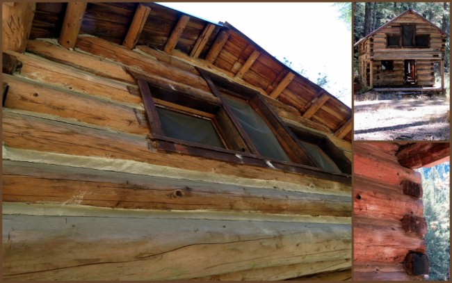 Harlow Cabin #2