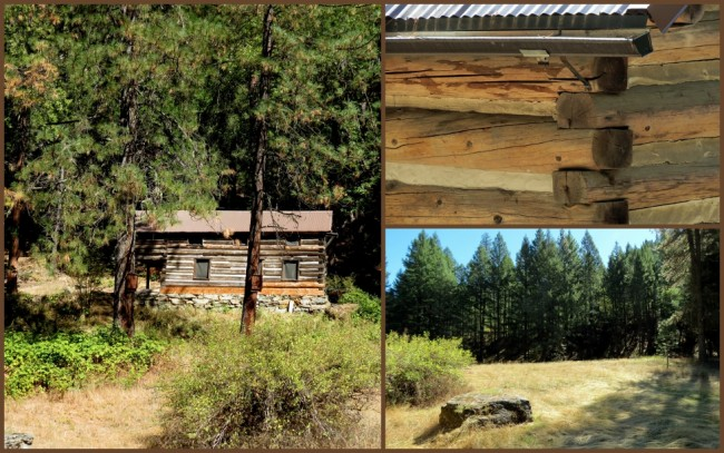 Harlow Cabin #4