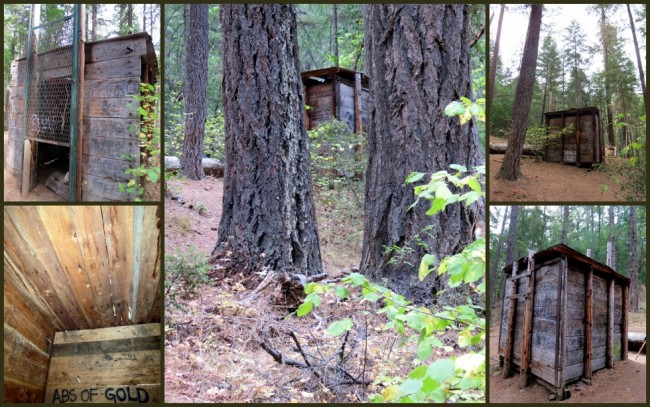 Bigfoot Trap #1