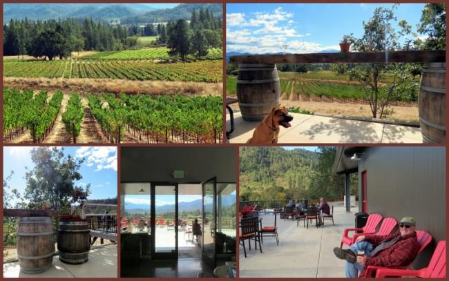 Serra Vineyard #1